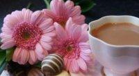 Корисні властивості чаю Хельба для схуднення: як приймати жовтий чай?