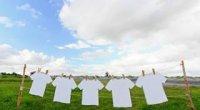 Як відбілити білу футболку в домашніх умовах: пожовклу, посірілу, полинялу