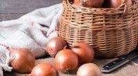 Як зберігати цибулю в домашніх умовах влітку і взимку, в погребі і в квартирі