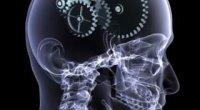 Гімнастика для розуму: стимулює мозкову активність