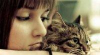 Алергічний дерматит у дорослих: симптоми і лікування