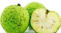 Що лікує адамове яблуко?