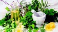 Відновлення печінки народними засобами: рецепти відварів і настоїв