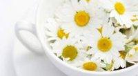 Олія ромашки: загальні відомості, властивості і вплив рослини на шкіру