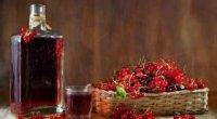 Як зробити вино з забродивших ягід в домашніх умовах