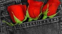 «Влюбляйся обережно», або правила розпізнавання альфонсів серед чоловіків