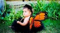 Новорічний костюм метелика для дівчинки своїми руками