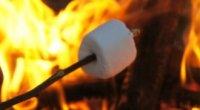Американські ласощі: способи приготування смаженого зефіру
