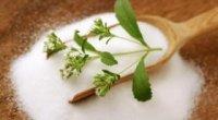 Трава стевія для схуднення: особливості застосування, корисні властивості, протипоказання