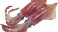 Як варити кальмари для салату і скільки?