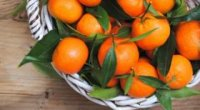 Аскорбінка при вагітності: для чого призначається вітамін С