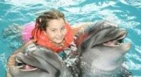 Дельфінотерапія: користь для організму, позитивний вплив