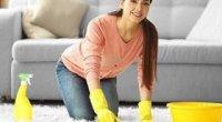 Як почистити килим в домашніх умовах без пилососа: від плям, запаху