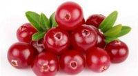 Брусниця з цукром на зиму без варіння: рецепти