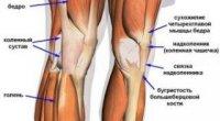 Шишка під коліном ззаду: в чому причина дискомфорту?