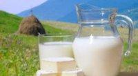 Все що потрібно знати про козяче молоко