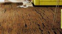 Пробкові підлоги: плюси і мінуси