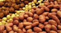 Скільки вариться картопля в супі після закипання?