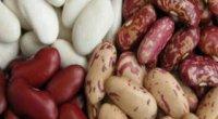Квасоля при схудненні: користь і нюанси приготування