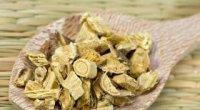 Корінь алтея: лікувальні властивості і протипоказання
