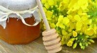 Ріпаковий мед: користь і шкода, протипоказання