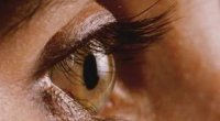 Макулодистрофія сітківки ока: лікування