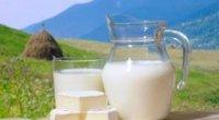Козяче молоко для дітей: користь і шкода