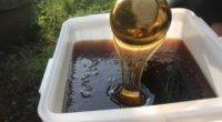 Особливості падевого меду і сфера його застосування