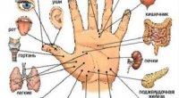 Су-джок терапія — що це таке, лікування в домашніх умовах