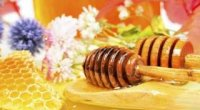 Яким буває мед і в чому «фішки» різних видів?