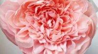 Квіти з гофрованого паперу: як зробити, як вибрати матеріал?