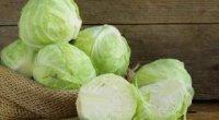 Білокачанна капуста: користь і шкода