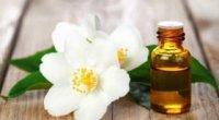 Чим корисна ефірна олія жасмину?